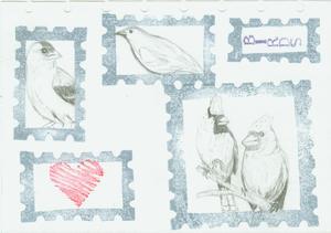 Bird_stamp_roughs