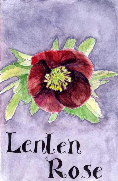 Lent004